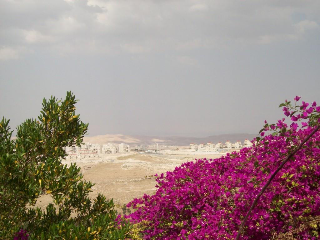 Siedlungsbau (Ma'ale Adumim)